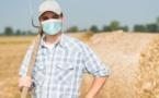 Impact et conséquences de la pandémie sur les agriculteurs français