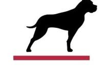 GP Bullhound dévoile le top 10 des tendances Tech pour 2019
